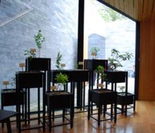 Expositores (projecto expositivo de António Cerveira Pinto) para Centro de Interpretação da Lagoa das Furnas (arquitectura de Aires Mateus), São Miguel, Açores, Portugal, 2012