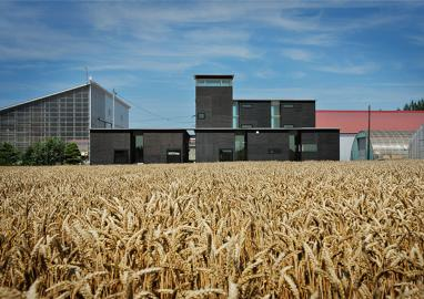 Grande Prémio Barbara Cappochin 2009, Konishi Hikohito, arquitecto